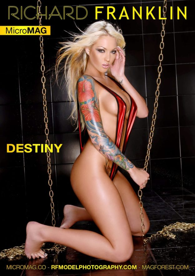 Richard Franklin Micromag – Destiny